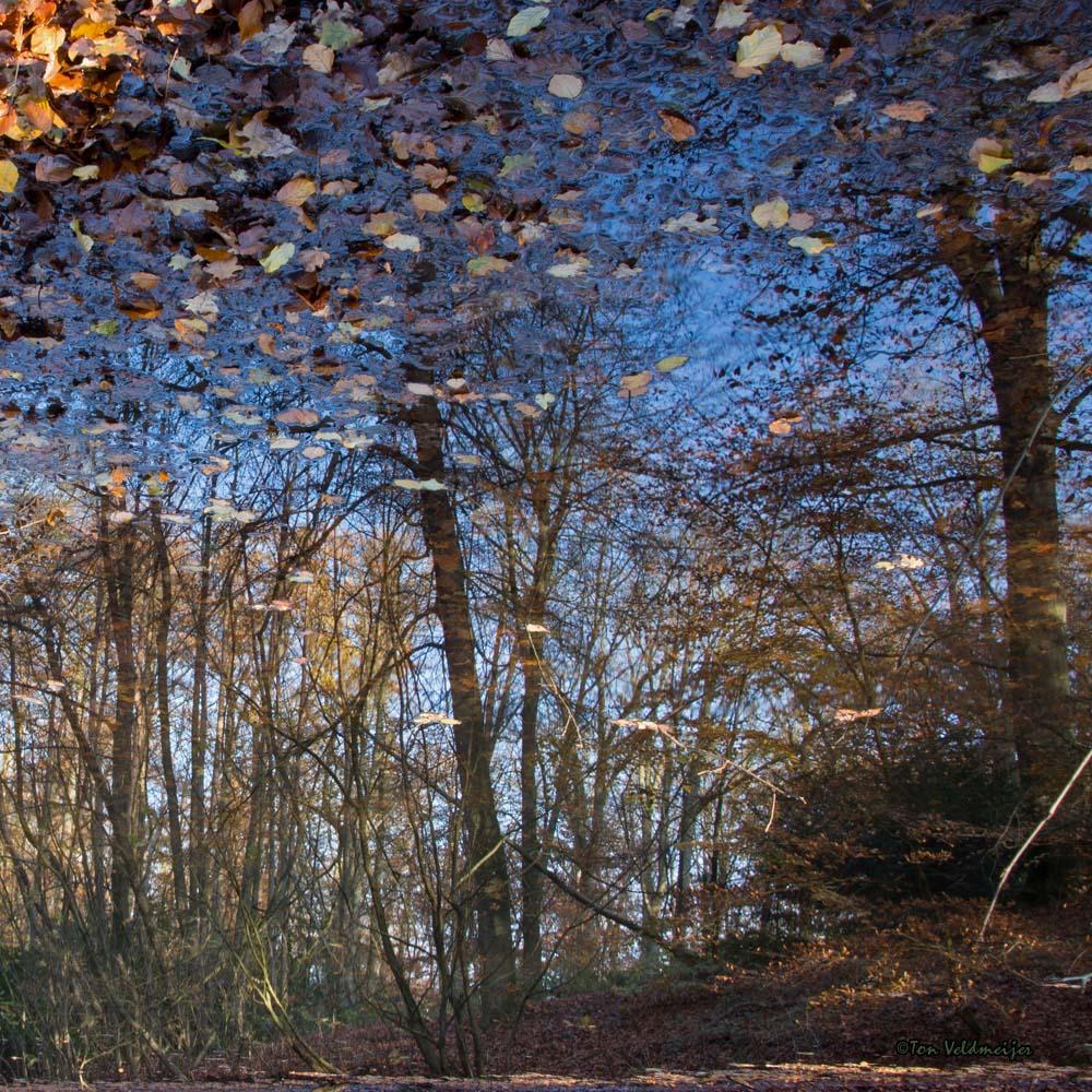 DeBeek Herfst Stukje Zon